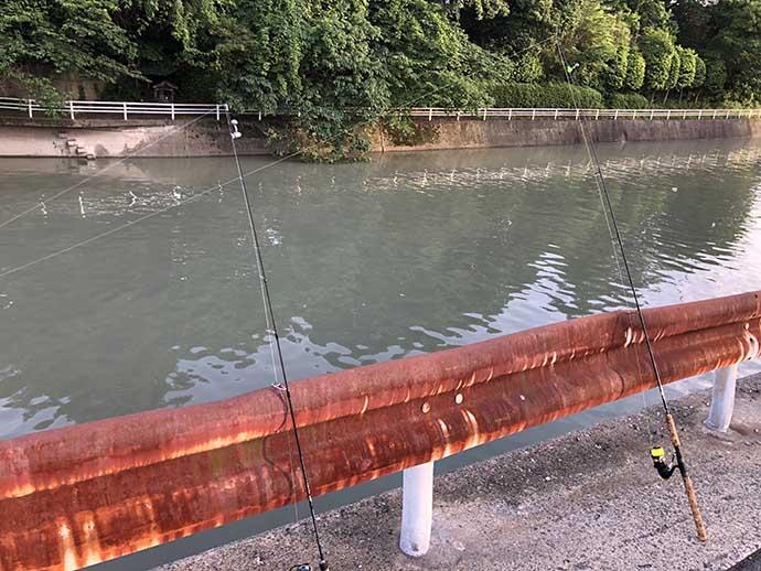 釣ったウナギで「ウナ丼」を作りたい ポイント選びと基本の釣り方