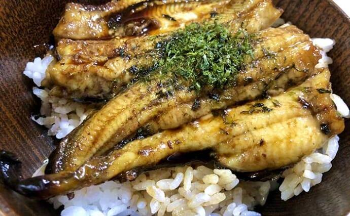 釣ったウナギで「ウナ丼」を作りたい 持ち帰り方と下処理&調理法