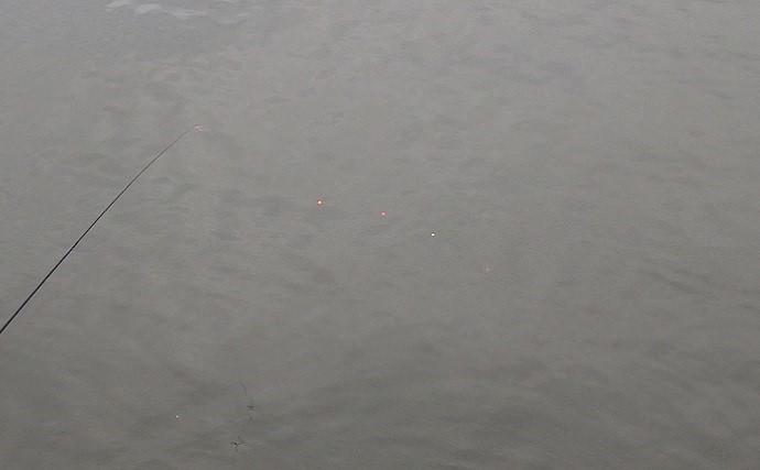 潮干狩りとハゼ釣りの二刀流が楽しい 潮汐見極め一石二鳥【千葉】