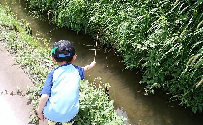 休日に親子で楽しむザリガニ釣り 活性高く30分でバケツいっぱい【埼玉】