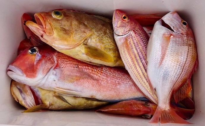 自治体が「釣りライター」養成講座を開設 持続可能な地方創生策に期待