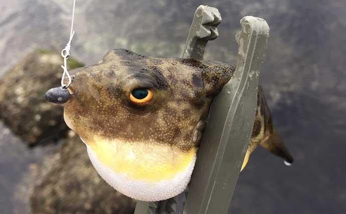 コロナ禍で釣り人増加中 初釣行前に「最低限知っておきたい」ルール
