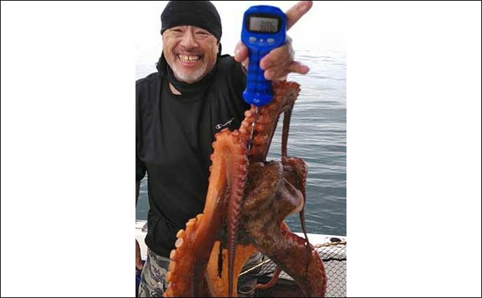 ボートタコ釣りで3kg超え頭に船中50匹前後 エサ巻きエギが吉【兵庫】