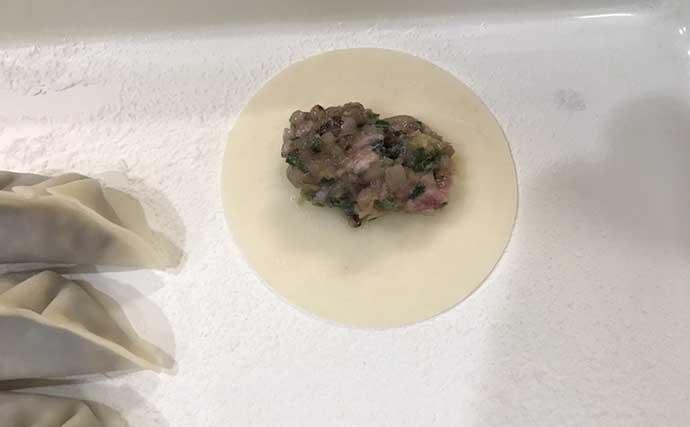 釣り人的「変わりダネ」レシピ:ムギイカ餃子 冷凍保存も可能