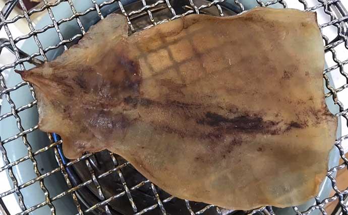 釣り人的「干物」レシピ:ムギイカで作る乾物スルメ 干し加減はお好みで