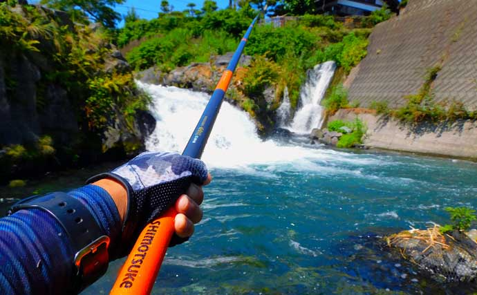 渓流エサ釣りで63cmニジマスほか快釣 マヅメ釣行が熱中症対策にも