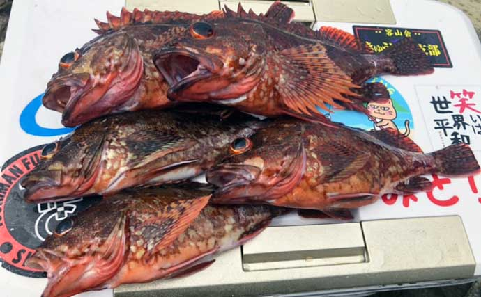 沖磯リレー釣りで良型カサゴ&尾長クロに挑戦 自由な遊び方で堪能【大分】