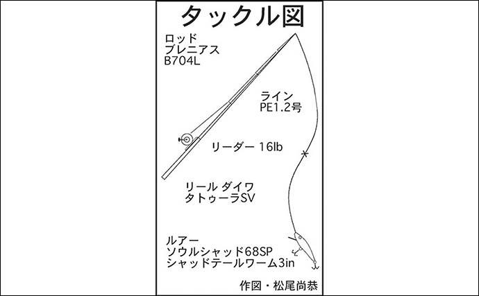 陸っぱりから36cmキジハタ手中 プラッギングでのヒットに満足【福井】