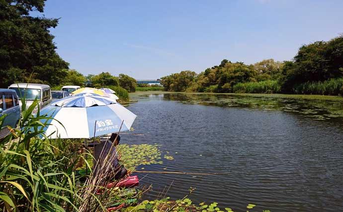 釣りと一緒に味わいたいご当地グルメ:イタリアン【新潟・大通川】