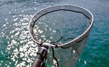 ライトショアジギング(LSJ)で釣り入門:魚の『ランディング』術