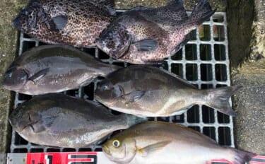 夏磯で楽しむフカセ釣り まきエサワークで34cm頭に尾長グレ4枚【山口】