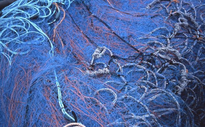 『定置網漁』の見学会が実施 「環境に優しい」と言われているワケとは?