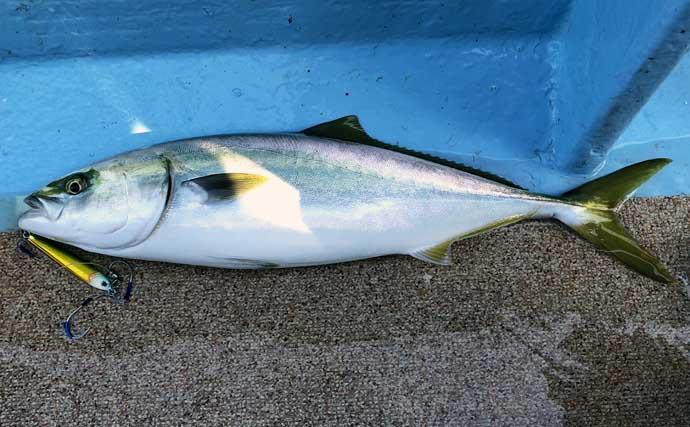 ジギング&タイラバゲームで8魚種キャッチ 夏の鳥羽沖ルアー釣りが熱い