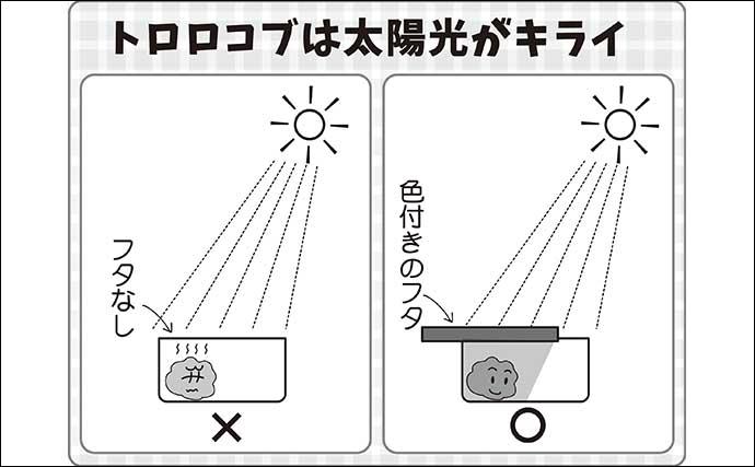 伊藤さとしのプライムフィッシング【ヒゲトロでトロ巻きセット:第2回】