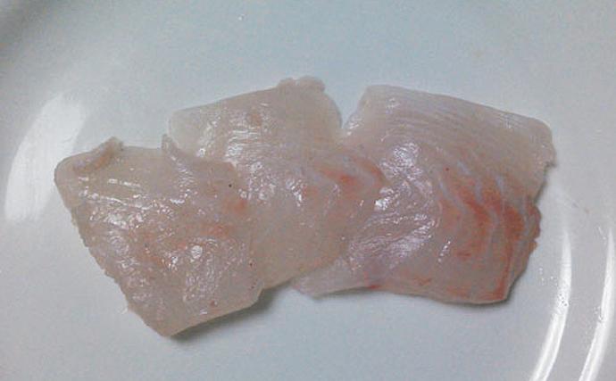食味の評価分かれる『ニザダイ』 英語で「外科医の魚」と呼ばれる訳は?