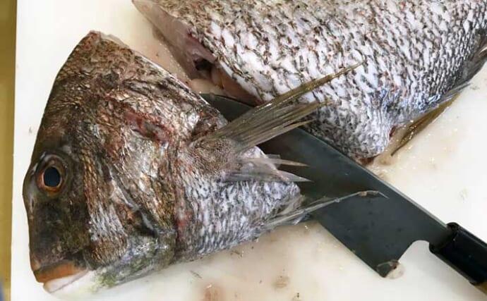 鮮魚はまるまる『一本買い』が間違いなくオススメ 3つの理由とは?