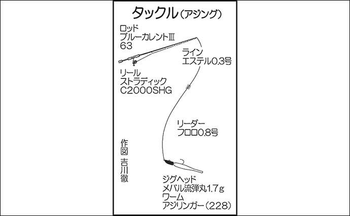 日中のアジング&イカメタルゲームで両本命キャッチ【佐賀・Wingar】