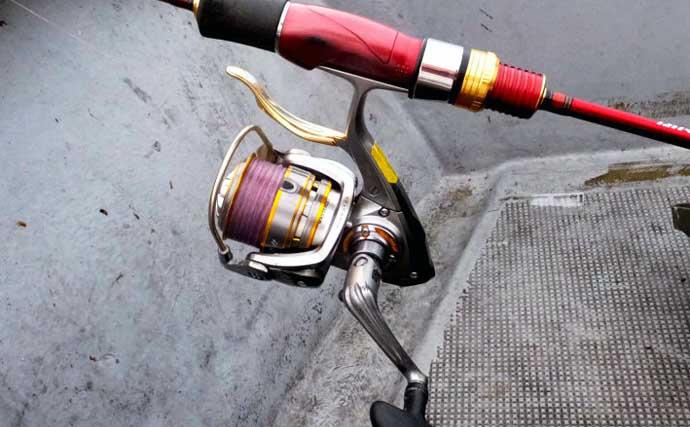 3ケタ釣果が狙える『船キス釣り』入門解説 ビギナーに最適&やり込み要素も