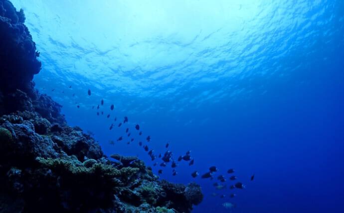 海底火山に「漁船の名前」がつけられるワケ 地形と漁場の関係がヒント?