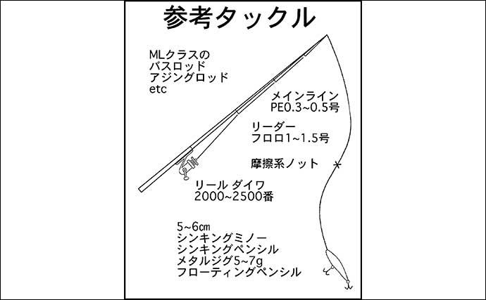 夏〜秋に人気の『メッキゲーム』入門解説 小さくても引き味は抜群