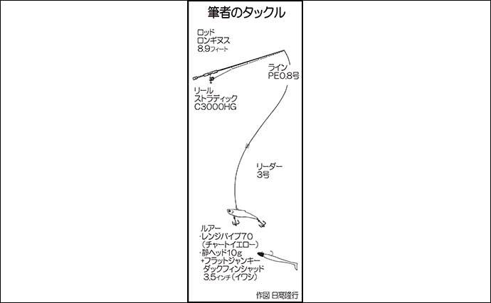 陸っぱりルアーマゴチ釣りで2連発 細かい『ボトムノック』が決め手?