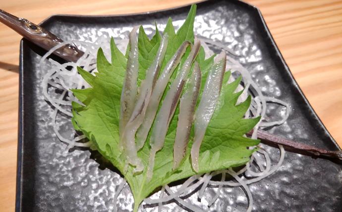 色の違いは天地の差? 美味で知られるアカヤガラと未利用魚のアオヤガラ