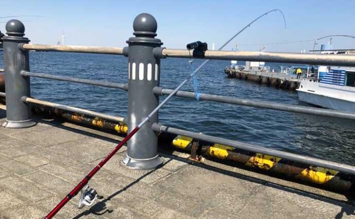 釣り好き気象予報士に聞く「天気との付き合い方」:風と体感温度の関係