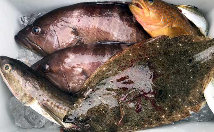 釣り人的にぎり寿司レシピ:「シャリ玉」商品利用でラクラク&絶品に
