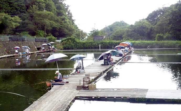 管理釣り場で夏のヘラブナと遊ぼう エサ&仕掛け解説【大阪・FC竹の内】