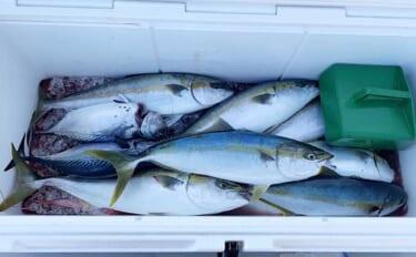 知っておきたい『釣果情報』のオモテとウラ:「1人あたり釣果」の捉え方