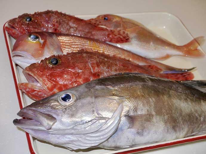 釣り人の「ちょっと変わった生態」:釣った魚はどうやって食べてるの?