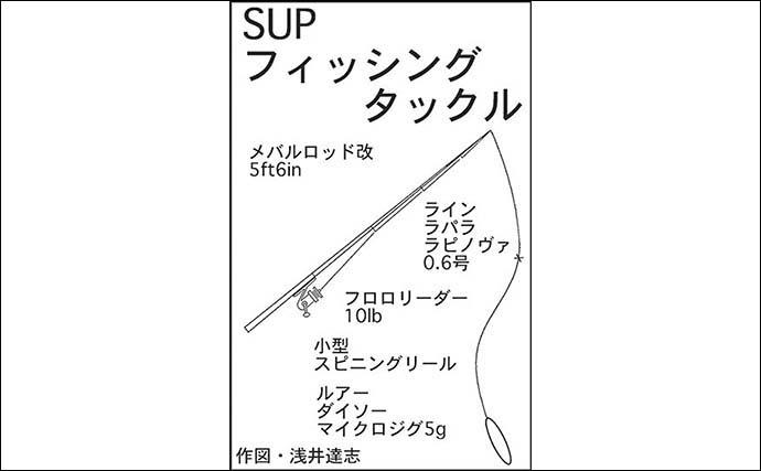 100均ジグ縛りSUPフィッシング堪能 オオモンハタなど五目達成【三重】