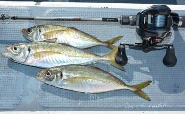 船長に聞く「沖釣り初心者の心得」:東京湾LTアジ 厳選船宿8選も紹介