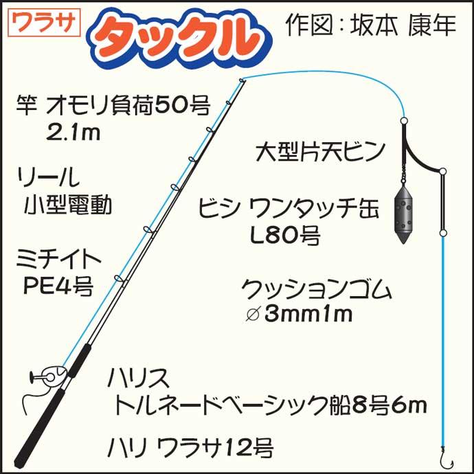 東京湾「コマセワラサ」釣り絶好調 トップ10尾超えで早上がりも