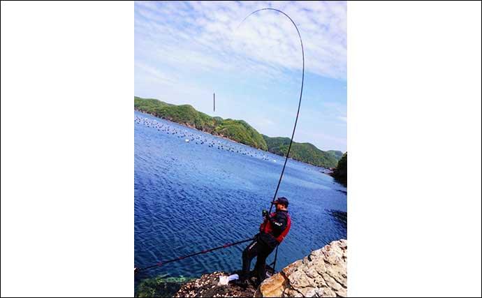 夏チヌ狙いのフカセ釣り入門解説 朝マヅメは「静か」に「際」を狙おう