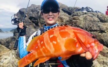 沖磯の根魚ゲーム&フカセ釣りでアカハタにクロ 釣果は豪華お寿司で堪能