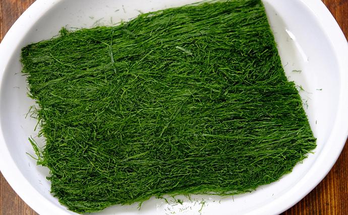 中国の浜を埋め尽くす不気味な藻 正体は日本人の大好きな「青のり」?