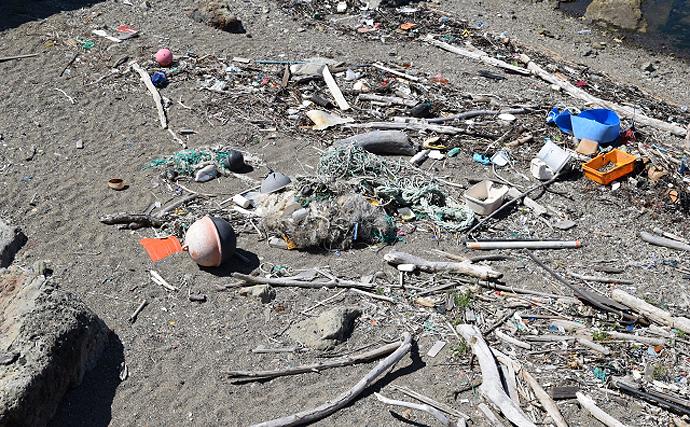 海洋生物たちの脅威「プラスチック汚染」 鍵を握る『生分解性』とは?