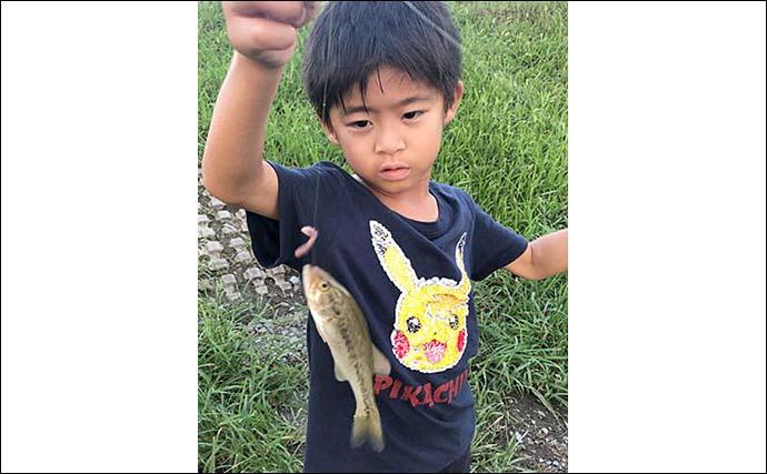 子供と一緒が楽しい「小物釣り」 ハゼにブラックバスにブルーギル連発