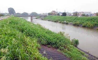 今週のヘラブナ推薦釣り場【東京都・新河岸川放水路】