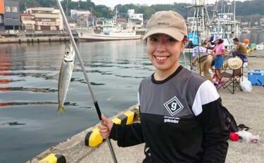 三浦半島にウルメイワシ回遊中 朝マヅメの短時間堤防サビキ釣りで約60尾