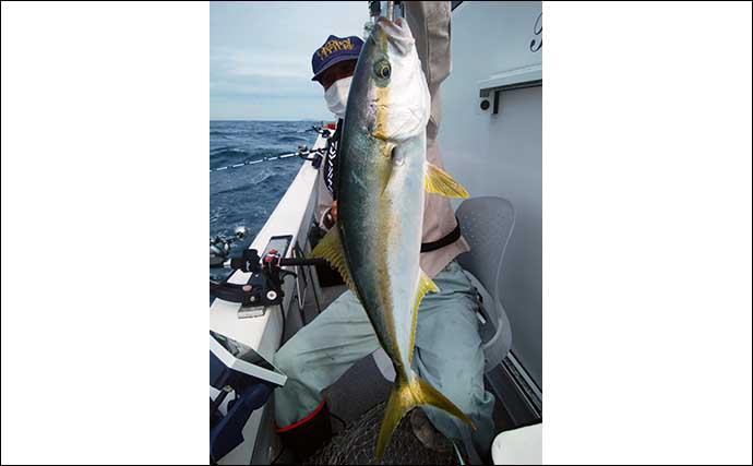 落とし込み釣りでヒラマサやブリ乱舞 船中青物30尾にアコウなども