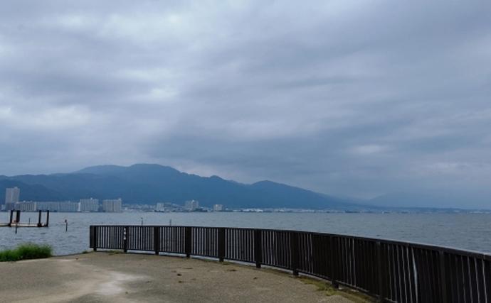 琵琶湖の「水草」が肥料になる? 背景には特定外来生物の大量繁殖問題
