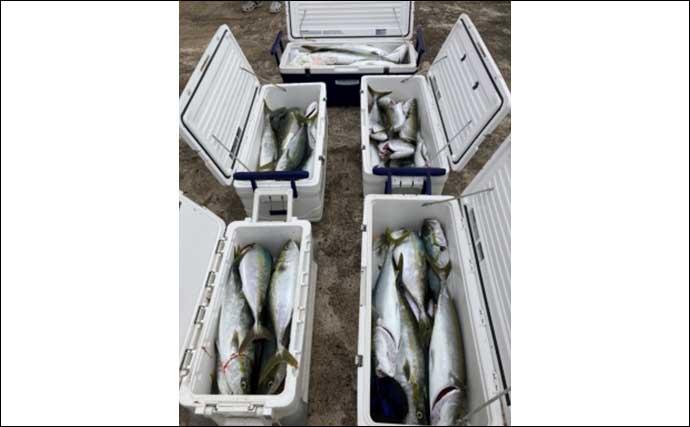 今週の『船釣り情報』特選釣果:活きエサ使用の釣りで大型青物絶好調