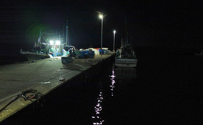 常夜灯は初心者におすすめの夜釣り一級ポイント 実はハズレも存在?