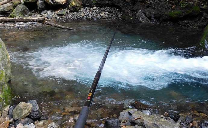 シーズン終盤の渓流エサ釣りで良型ヤマメ&イワナ手中 サイズ感に満足