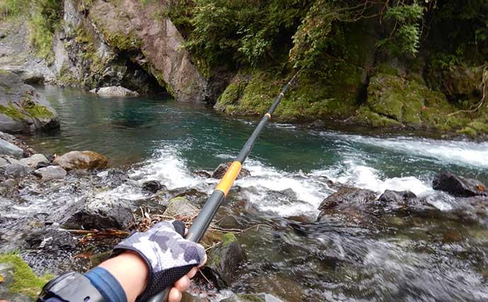 2021シーズン最終渓流釣りで尺ヤマメ&イワナ 今期の平均釣果は22尾