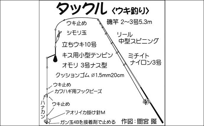 陸っぱりアオリイカ釣り超入門:関西圏の代表的な釣り方3選