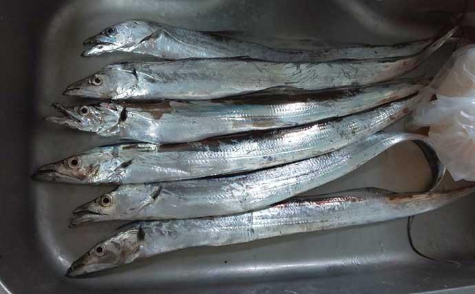 関西エリア「陸っぱりタチウオ」超入門 代表的な4つの釣り方とは?