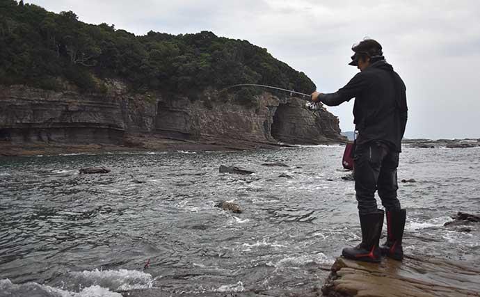新子アオリ狙いのエギングで連発 『釣りドコ』活用で全場所ヒット達成